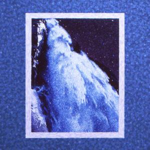 PlasticFlowers-Heavenly-albumcoverart