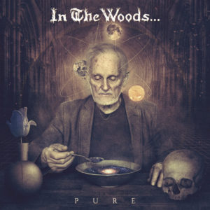 InTheWoods-Pure-coverart